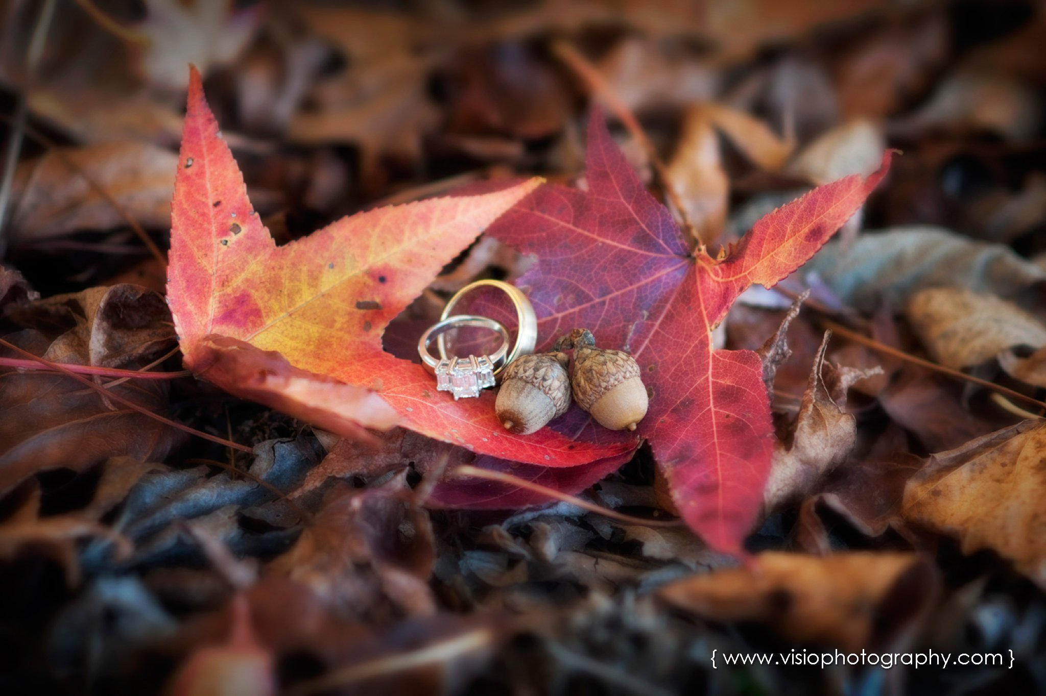 Outdoor fall wedding in Alpharetta. GA