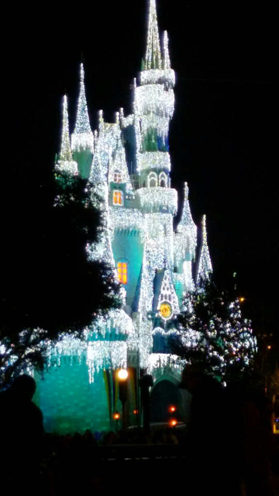 Frozen Castle at Disney World