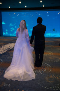 Bride and groom at GA Aquarium wedding ceremony